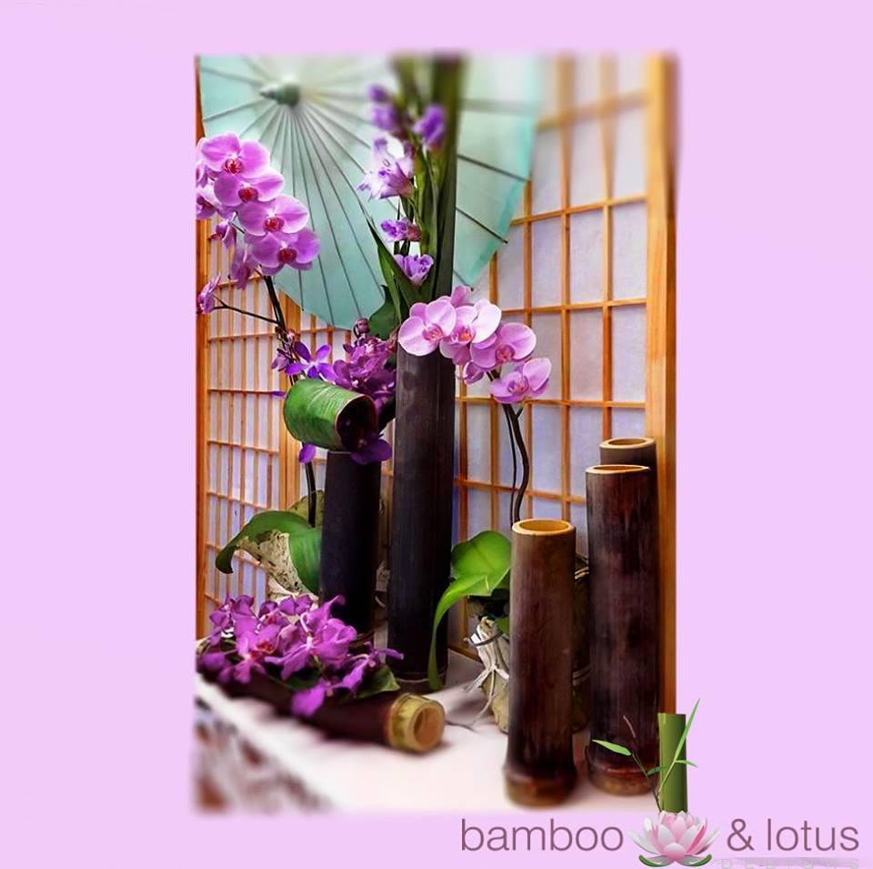 BLD Bamboo boats - 2 -1505199_1516101045306481_4905736795888308139_n