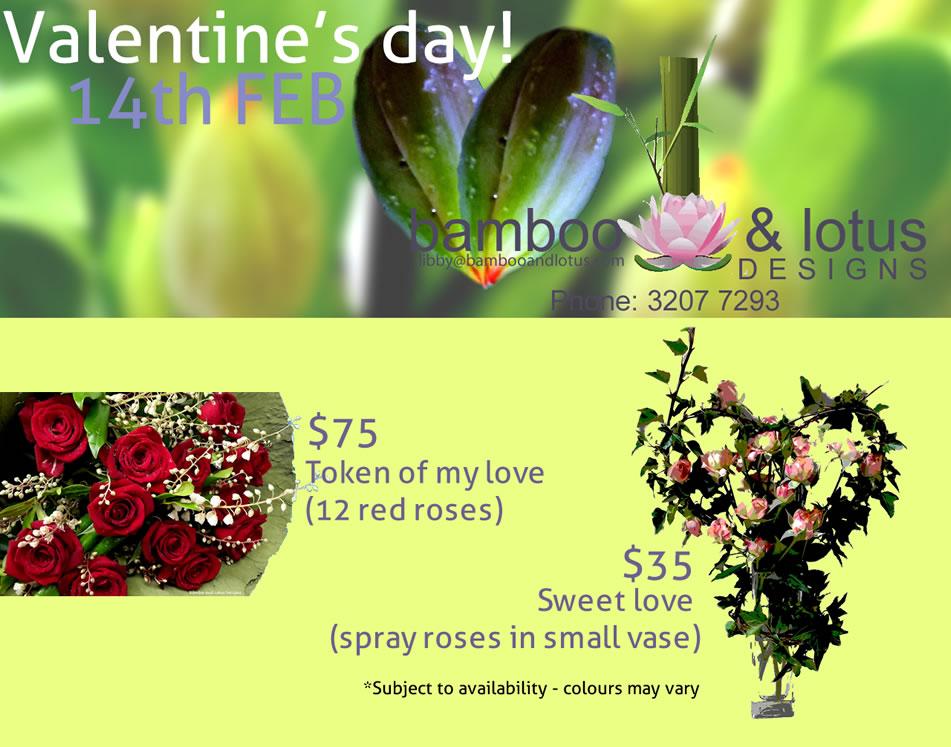 libby,blog,ad,valentine2015